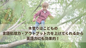 木登りはこどもの言語処理力・アウトプット力を上げてくれる…と英語力にも効果的!