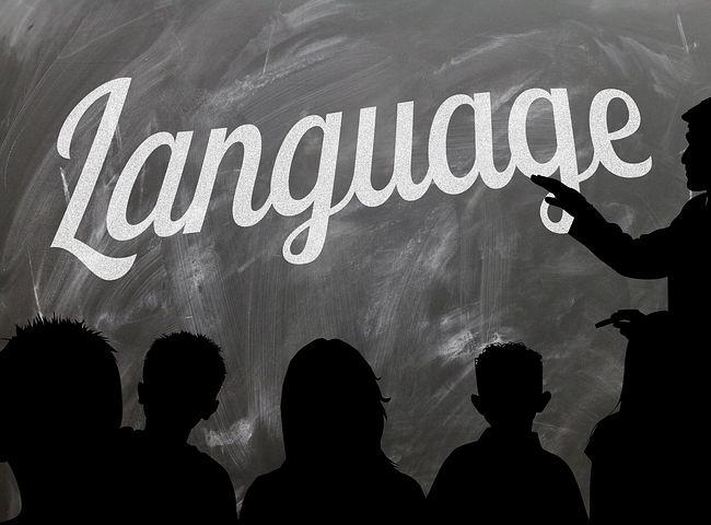 多言語文化と日本でのおうち英語育児は違う!『言語習得理論<個の発達』を活かす必要性